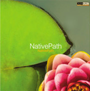 Album-MitchGoldfarb-JonCurrent-NativePath